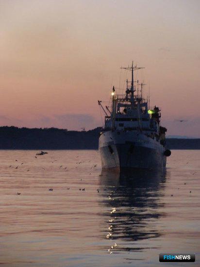 Дальневосточную рыбу отдадут Минвостокразвития?