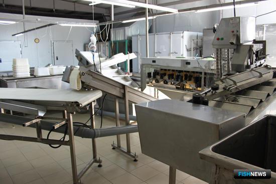 В позапрошлом году «ДВ-Фиш» закупили новое оборудование, производительность завода повысилась до 100 тонн в сутки