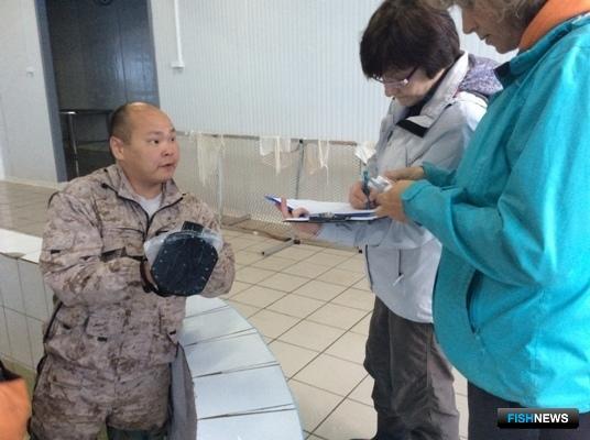 Регистрация схем скрещивания амурского осетра. Фото пресс-службы ВНИРО