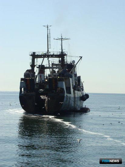 Рыбаков предложено лишать права на вылов «без суда и следствия»