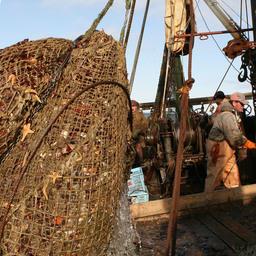 Сахалинская ассоциация продолжит отстаивать интересы рыбаков