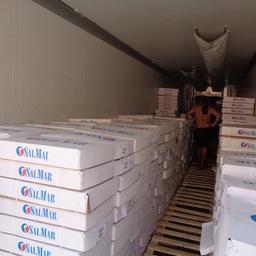 17,5 тонн хребтов семги пытались провезти из Казахстана по документам на дыни. Фото пресс-службы Приволжского таможенного управления