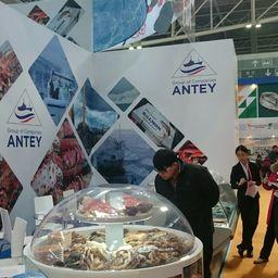 Стенд группы компаний «Антей» привлек большое внимание посетителей международной выставки в Циндао