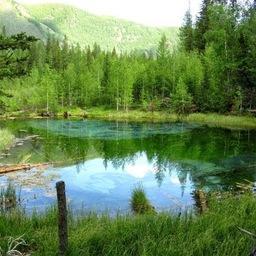 Лесное озеро. Фото из открытых источников