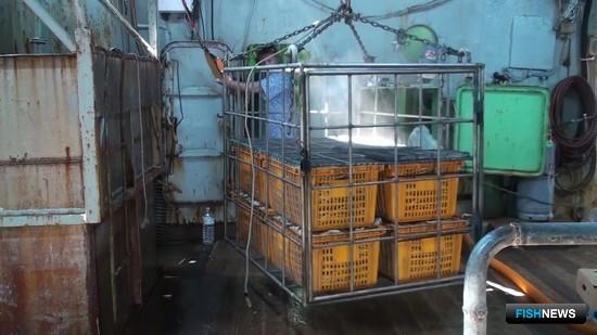 Судно оказалось оборудовано под добычу и переработку ценного биоресурса. Фото пресс-службы ПУ ФСБ России по Сахалинской области