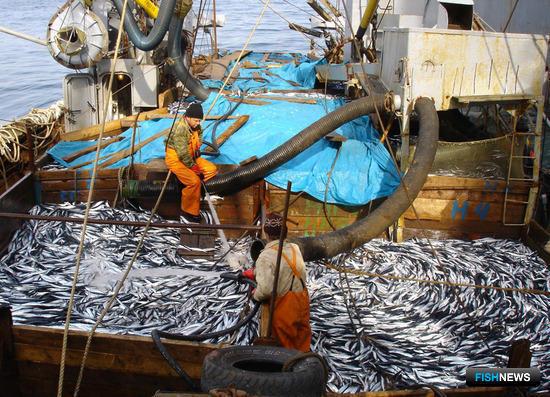 Рыбаки предлагают сделать контроль более комфортным