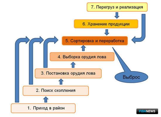 Рисунок 1. Схема промыслового цикла рыбодобывающего судна, оборудованного технологической линией по переработке улова