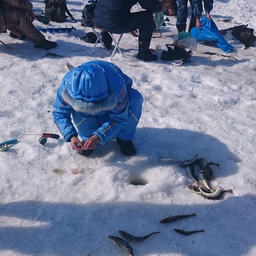 «Сахалинский лед» позволил каждому одержать пусть маленькую, но победу