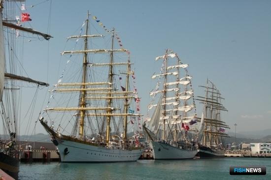 В Сочи стартовала международная Черноморская регата. Фото пресс-службы МГТУ
