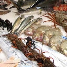 Помимо технического регламента ЕАЭС «О безопасности рыбы и рыбной продукции» производители также должны руководствоваться требованиями горизонтальных техрегламентов