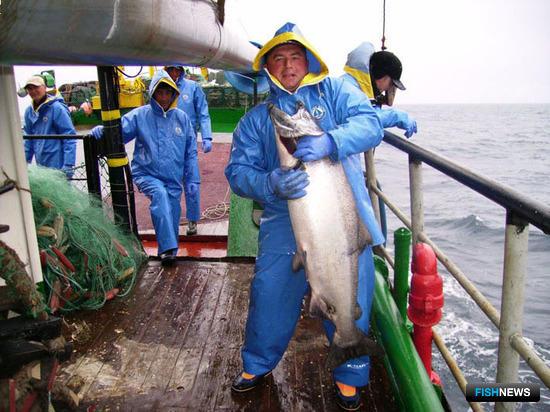Рыбаки попросили уточнить, подо что им переоборудовать дрифтероловы?