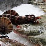 Работа над «рыбным» техрегламентом – в завершающей стадии