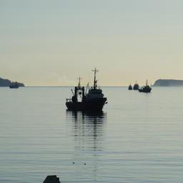Рыбный промысел у берегов Камчатки