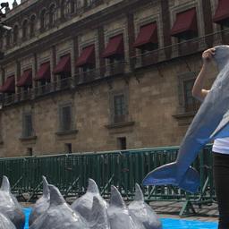 Представительница WWF несет сделанную из папье-маше куклу калифорнийской морской свиньи в Мехико. Фото Rebecca Blackwell, AP