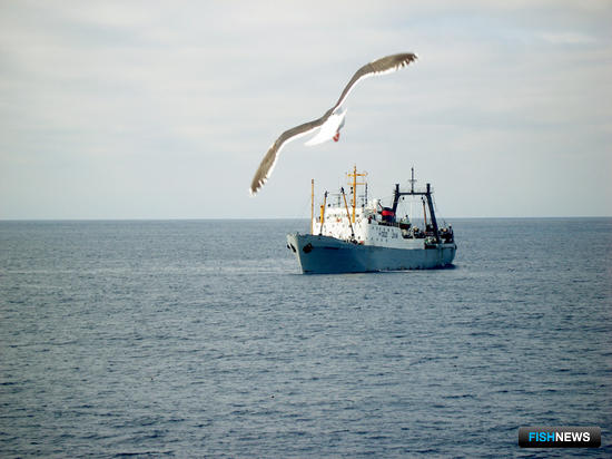 Промысел в открытом море получил требования