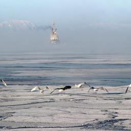 Неопределенные условия не остановят работу сахалинцев