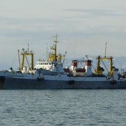 Рыбная ассоциация предлагает ограничить экспорт пошлинами