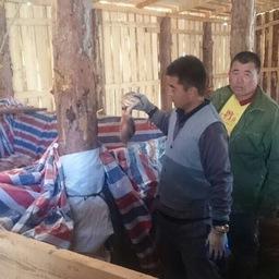 Работники сомнительного цеха. Фото пресс-службы Амурского теруправления Росрыболовства