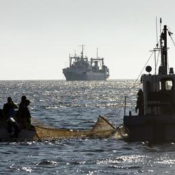 В составе холдинга «Гидрострой» – мощный промысловый океанический флот, суда для прибрежного рыболовства, современные комплексы по производству рыбопродукции, рыбоводные заводы