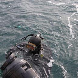 Субстрат с молодью трепанга помещают в емкости и доставляют в море, где расселением гидробионта занимаются водолазы