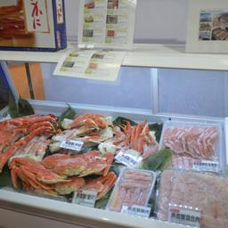 В Циндао прошла 18-я ежегодная выставка морепродуктов и технологий рыбопереработки China Fisheries & SeaFood Expo