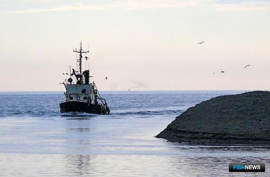 Минсельхоз готовится реализовать требование о регистрации «прибрежников»