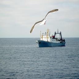 Квоты в зарубежных водах получили скидку за удаленность