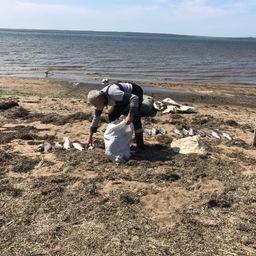 На северо-востоке Сахалина пограничники обнаружили рыбацкий стан для незаконной добычи лососевых и заготовки икры в промышленных масштабах. Фото пресс-службы областного погрануправления
