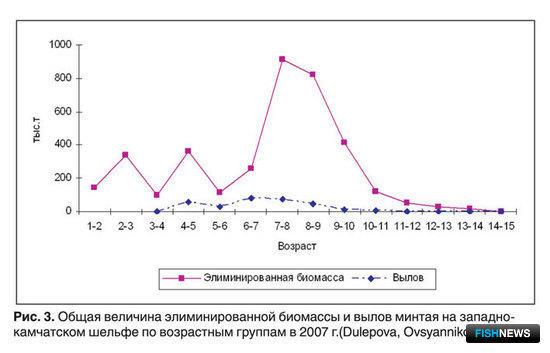 Рис. 3. Общая величина элиминированной биомассы и вылов минтая на западнокамчатском шельфе по возрастным группам в 2007 г.(Dulepova, Ovsyannikov, 2007)