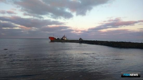 Началась откачка мазута с танкера «Надежда». Фото пресс-службы ГУ МЧС по Сахалинской области.