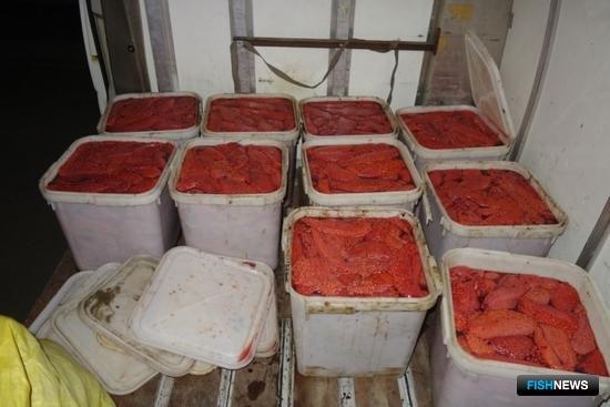 Во время осмотра иномарки стражи порядка обнаружили в салоне 10 куботейнеров икры весом 25 кг каждый. Фото пресс-службы УМВД России по Сахалинской области