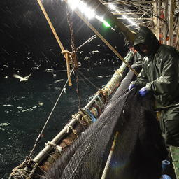 Прибрежный лов в Сахалинской области