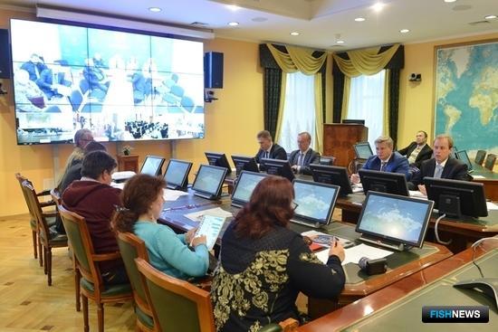 Селекторное совещание с общественными объединениями рыбаков-любителей в Росрыболовстве. Фото пресс-службы ФАР