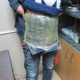 У граждан КНР, отправляющихся на родину, таможенники нашли 46,5 кг незадекларированного сушеного трепанга. Фото пресс-службы Уссурийской таможни