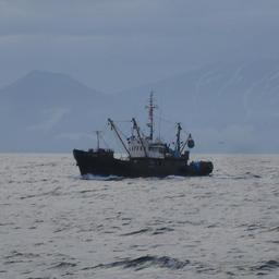 Выписка разрешений задержала курильских рыбаков