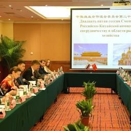 В Шэньчжэне прошла 25-я сессия Смешанной российско-китайской комиссии по сотрудничеству в области рыбного хозяйства. Фото пресс-службы Росрыболовства