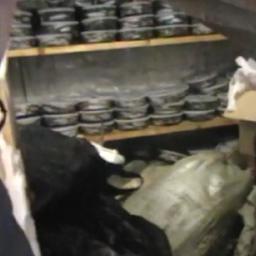 В Красноярском крае полицейские изъяли большую партию браконьерской продукции из осетровых. Кадр оперативной съемки