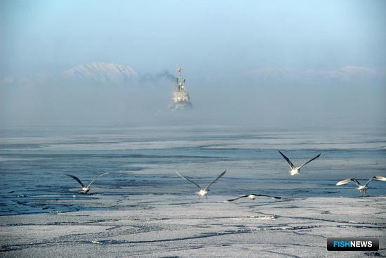 Рыболовецкое судно у берегов Сахалина