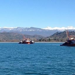 Азовский НИИ рыбного хозяйства направил научных наблюдателей вести мониторинг промысла хамсы в водах Абхазии. Фото пресс-службы института