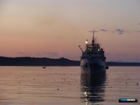 Переработка откроет путь к российской рыбе