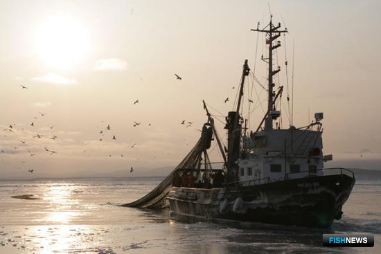 Росрыболовство предлагает полностью пересмотреть положение «прибрежки»