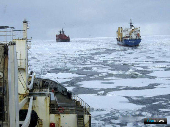 17-18 августа судам пришлось преодолевать ледяные поля