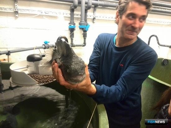 Студентам показали технологии выращивания рыбы на всех стадиях. Фото пресс-службы МГТУ.