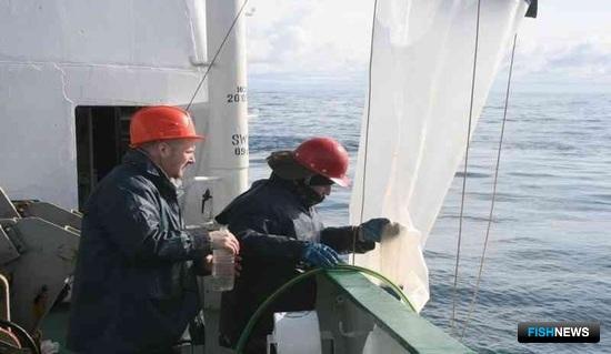 Отбор проб фито- и зоопланктона. Фото пресс-службы АзНИИРХ