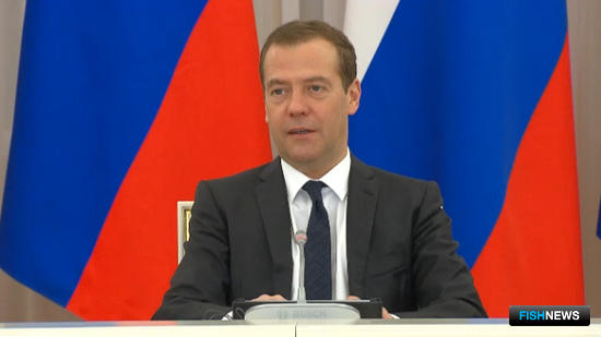 Премьер-министр Дмитрий МЕДВЕДЕВ отметил, что Россия прошла наиболее сложный период